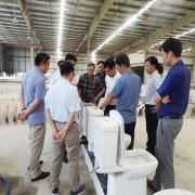 Khám phá công nghệ sản xuất của sứ vệ sinh Viglacera