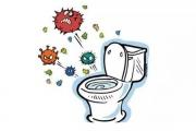 Nhà vệ sinh bẩn có thể gây ra 12 bệnh nguy hiểm này