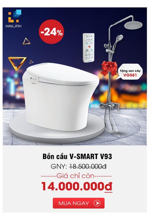 Bon cau V-Smart V93