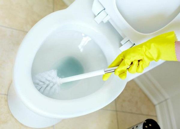 Sự cần thiết phải cọ rửa bồn cầu thường xuyên